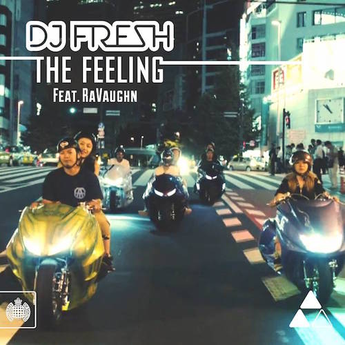 DJ Fresh - The Feeling ft. RaVaugh (Metrik Remix)