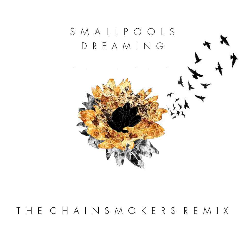 Smallpools - Dreaming (The Chainsmokers Remix) [Free Download]