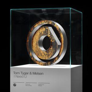 tom-tyger-melsen-i-need-u-original-mix