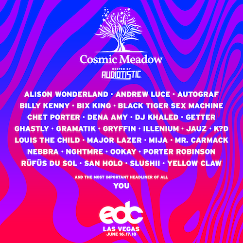 Cosmic Meadow 2017